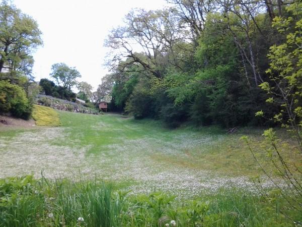 vue globale de l'emplacement de la cabane au fond du jardin
